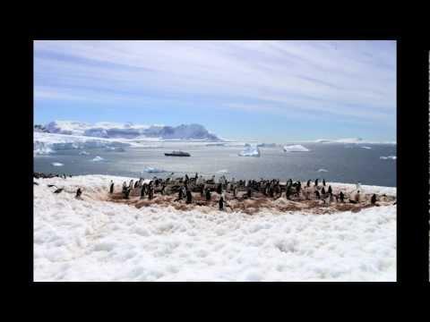 Antarctica: The Musical