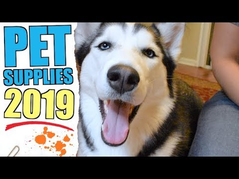 3 INCREDIBLE Pet Products For 2019!