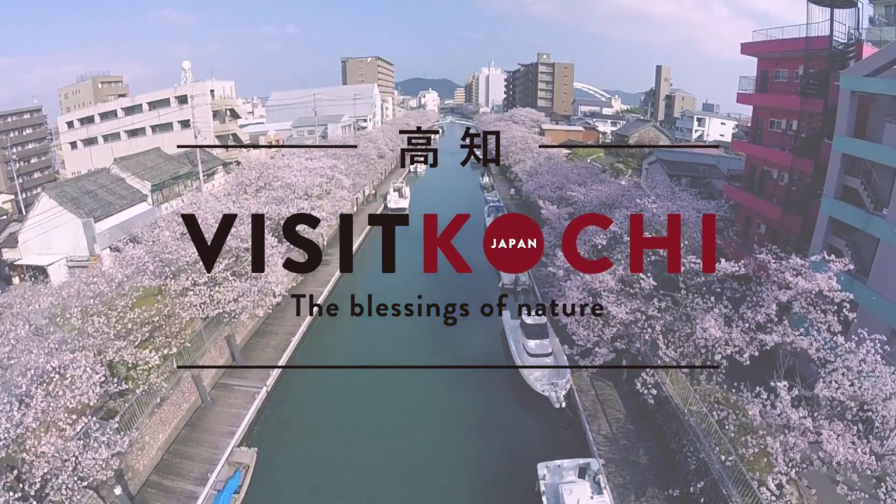 Kochi Castle What To See Do Visit Kochi Japan