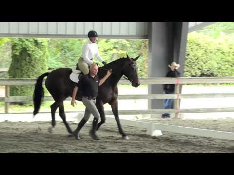 International Society for Equitation Science international convention Vancouver 2015