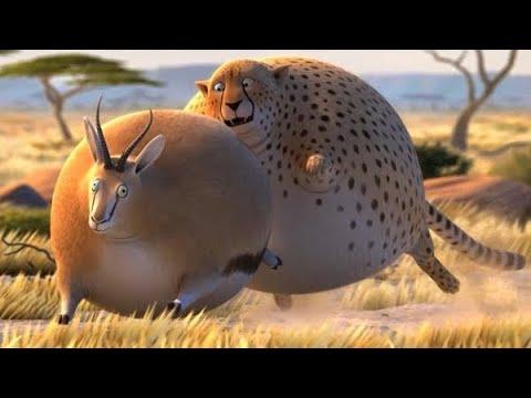 Анимационный мультфильм про животных