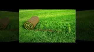 рулонный газон полива устройство водоемов Запорожье, Brillion-Club.com 3528(, 2014-08-12T13:04:03.000Z)