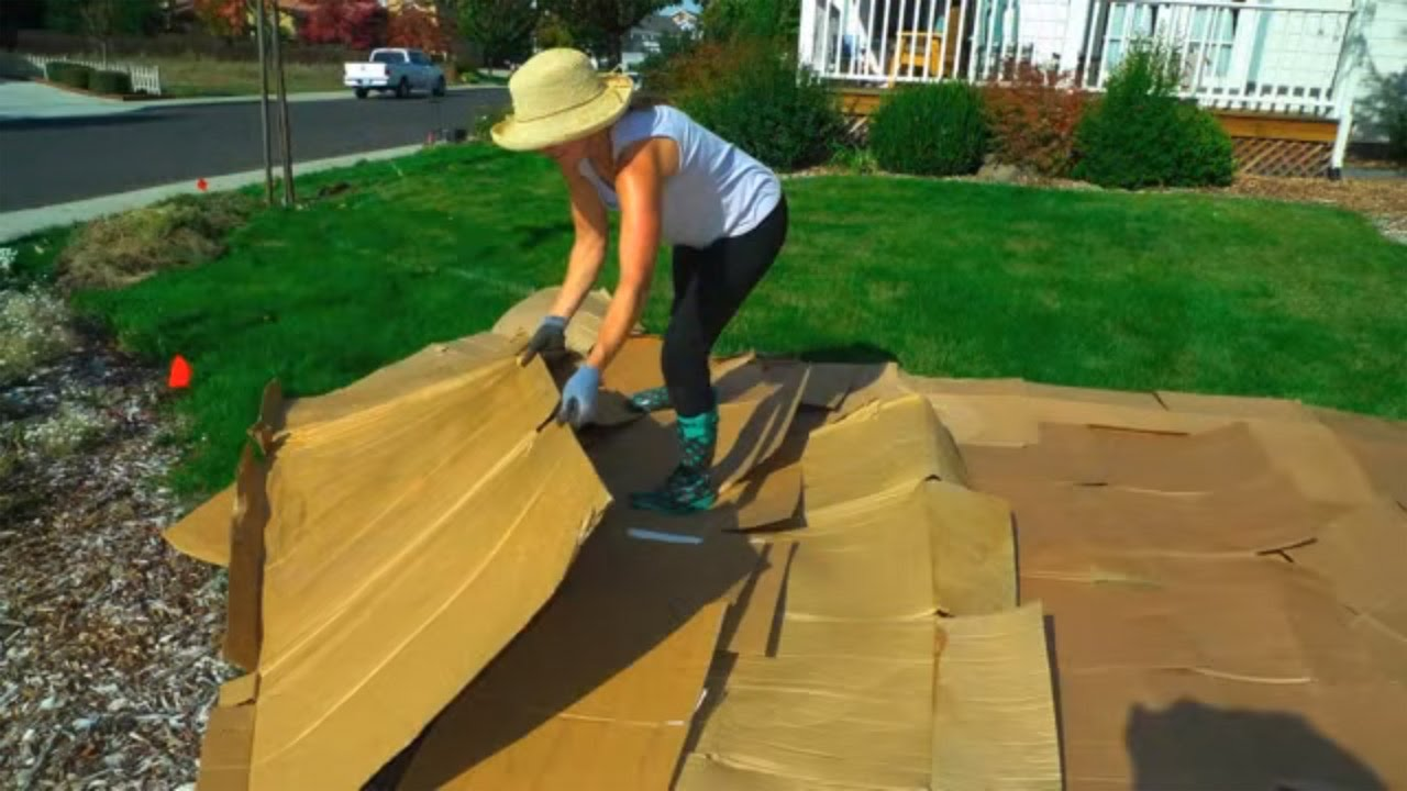 Convert Your Lawn By Sheet Mulching Youtube