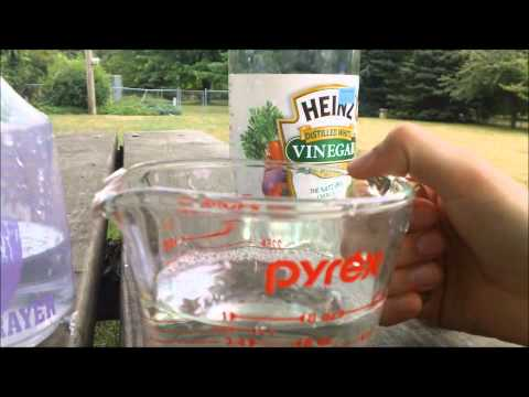 How To Make Horse  Fly Spray    Simple Easy Works