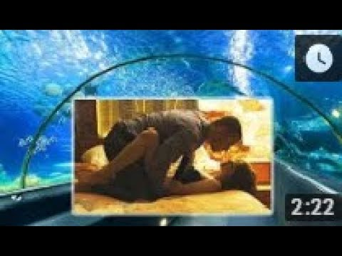 MV One Night Stand   Official Bollywood Movies Trailer hot scene