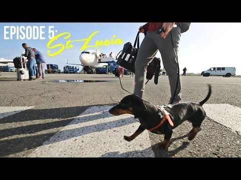 Episode 5: Crusoe Goes to St. Lucia (Part 1)