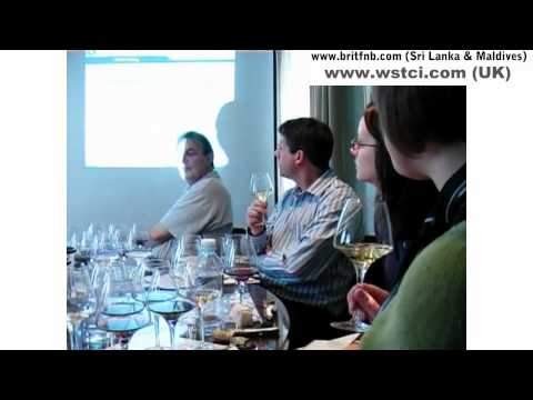 WSTCI LEVEL 1 WINE COURSE Testimonial Video