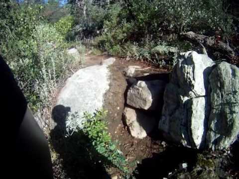 Sedona Forest Arizona Trail HD