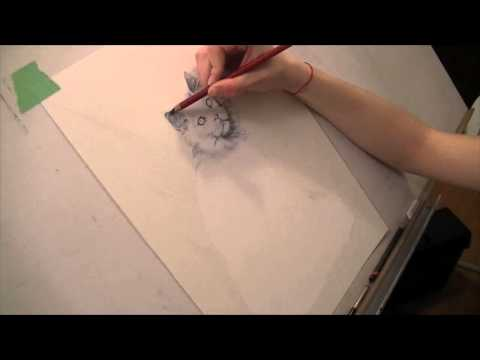 draw-my-pets:-white-maine-coon