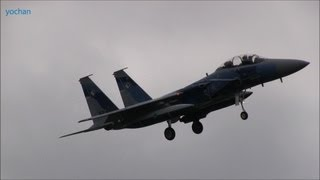 "F-15 Eagle.Landing approach !! Tactical Fighter Training Group ""Aggressor squadron"""