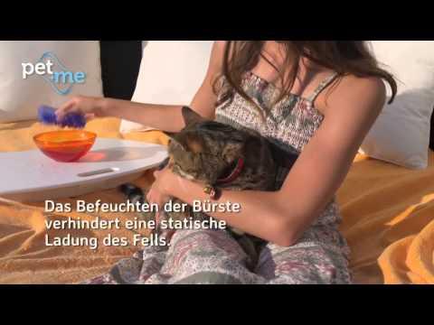 pet+me® Reinigungs- & Massagebürste für Hund und Katze