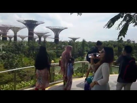 Beautful view of Marina Bay Sands and Garden by the Bay connecting bridge, Singapore Hridita and Adr