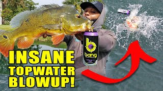 Catching HUGE Fish with Bang Energy! Monster Mike Fishing