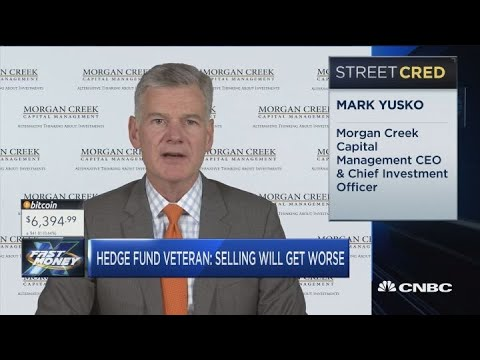 Stock market carnage will get worse: Morgan Creek Capital CEO