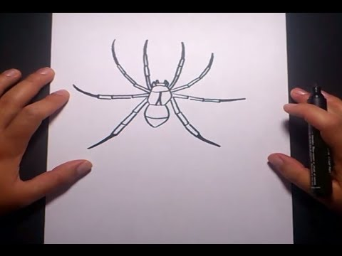 Como se dibuja una araña o tarantula paso a paso by Miguel Medina
