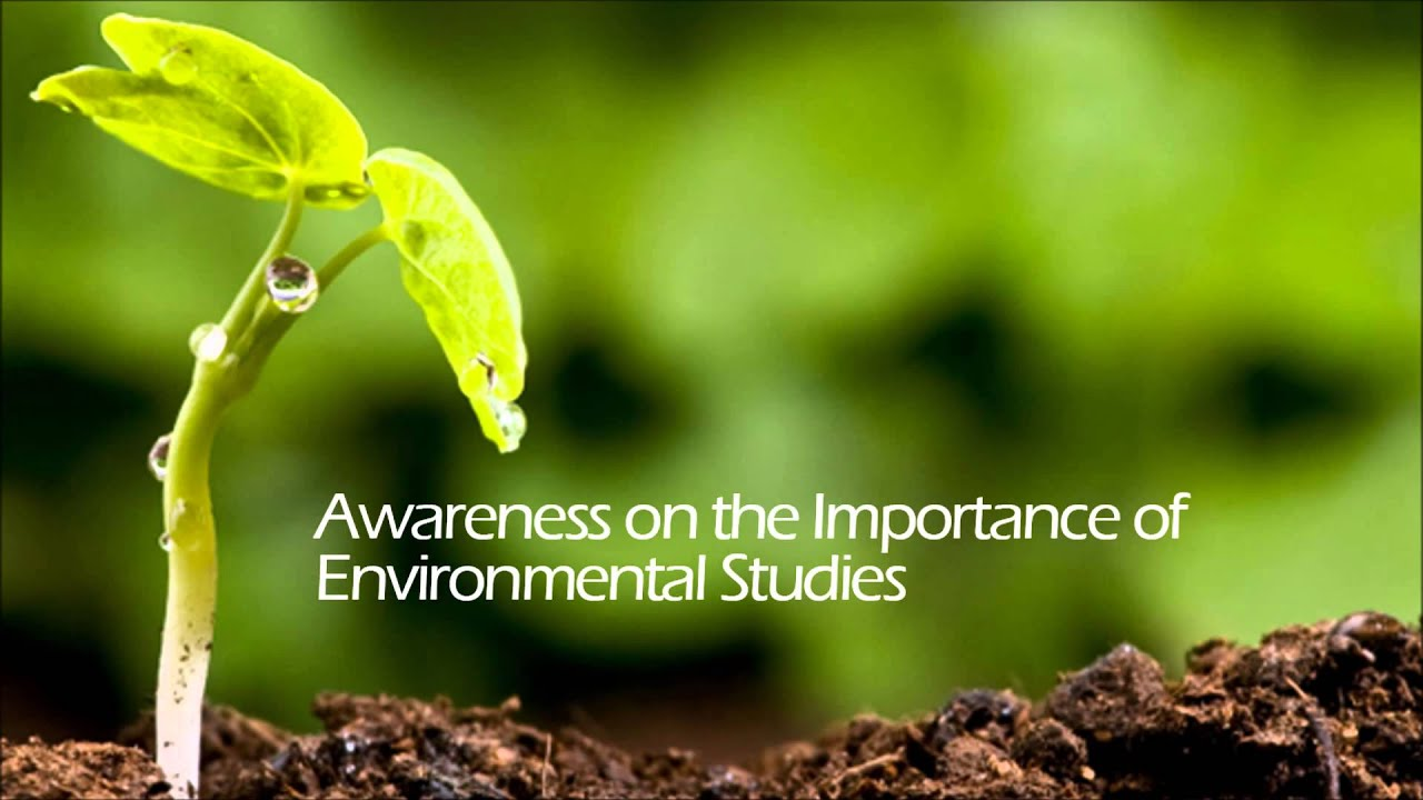 essay for environmental awareness Environmental awareness submitted by: submitted by ace013 this method seeks to describe a present existing condition, which in this study were the environmental awareness of the residents of the brgy.