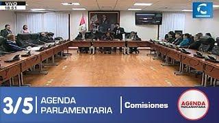 Sesión Comisión de Ética Parlamentaria 3/5 (08/07/19)