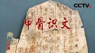 《考古公开课》 20200726 甲骨识文| CCTV科教 - YouTube