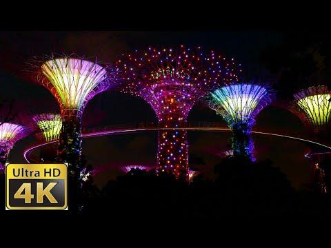 Singapura Supertree Grove / Menakjubkan Lampu Video Rendah 4k Video Yang Ultra-hd