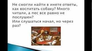 Школа любящих хозяев урок № 1 (Дрессировка собаки)