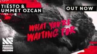 Tiësto & Ummet Ozcan - What You