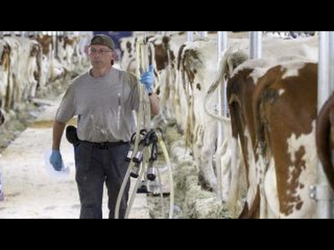 US dairy farmers caught in middle of trade fight with Canada