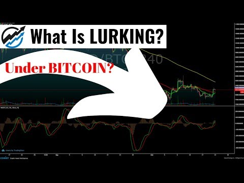 What Is LURKING UNDER BITCOIN?  And What Does It Mean For PRICE?
