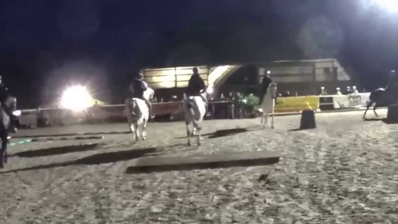 Working Equitation Team Gut Rothenkircherhof St. Wendel 2014