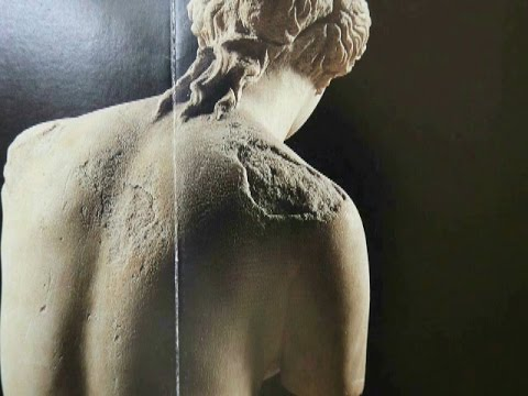 2002 1 Greek Sculpture part1 Venus de Milo疑惑のギリシア彫刻(1)ミロのヴィーナス・はがれ落ちたヴィーナスの美byはやし浩司Hiroshi Hayashi,