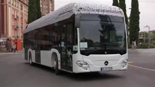 Full Electric Mercedes-Benz Citaro - Summer Testing
