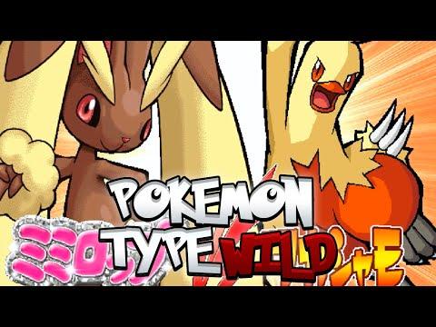 Pokémon Type Wild W/ FeintAttacks! Preparations For Pokkén?!