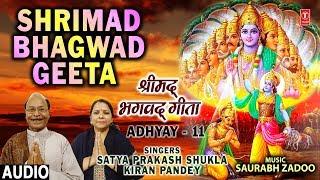 श्रीमद भगवद गीता,Shrimad Bhagwad Geeta Chapter 11, I Latest Audio, SATYA PRAKASH SHUKLA,KIRAN PANDEY