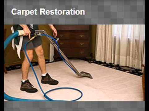 My Carpet Cleaning In Hudson Fl