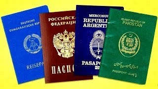 There are Only 4 Passport Colors in the World, and This is the Reason Why STRANGE INFORMATION