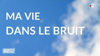 Envoyé spécial. Ma vie dans le bruit - 16 janvier 2020 (France 2)