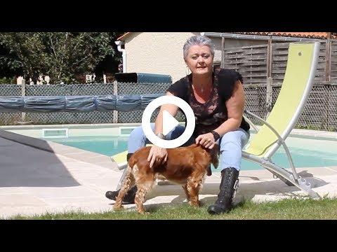 Vomissement Et Diarrhée Chien : Croquettes Sans Céréales - Témoignage Lucile | Joyeuses Gambades