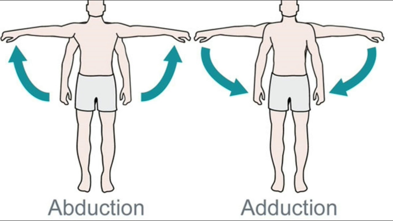What is Abduction and Adduction? - YouTube