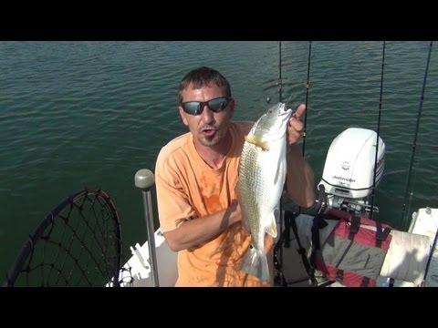 How To: Catch A Calaveras Lake RedFish