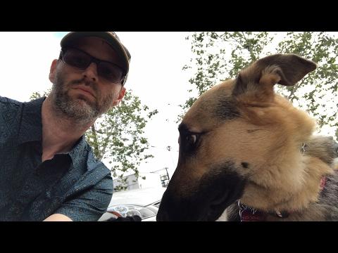 Friday Dog Walk thoughts: Wonder Woman