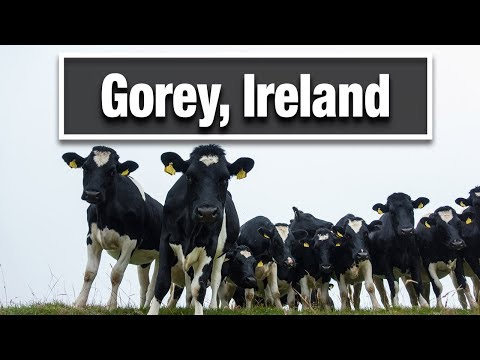 City Walks: Gorey Ireland County Wexford