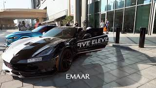 HORSE POWER @ ZABEEL SUPER CAR SHOW