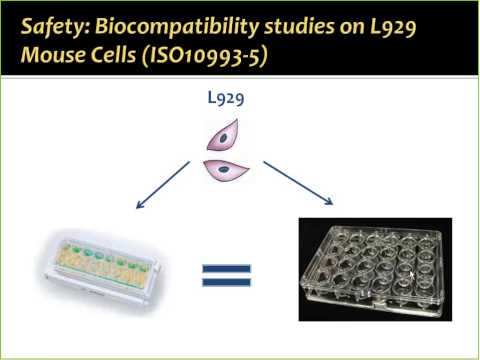 A Novel In Vitro Approach to Study Biocompatibility and Wound Healing