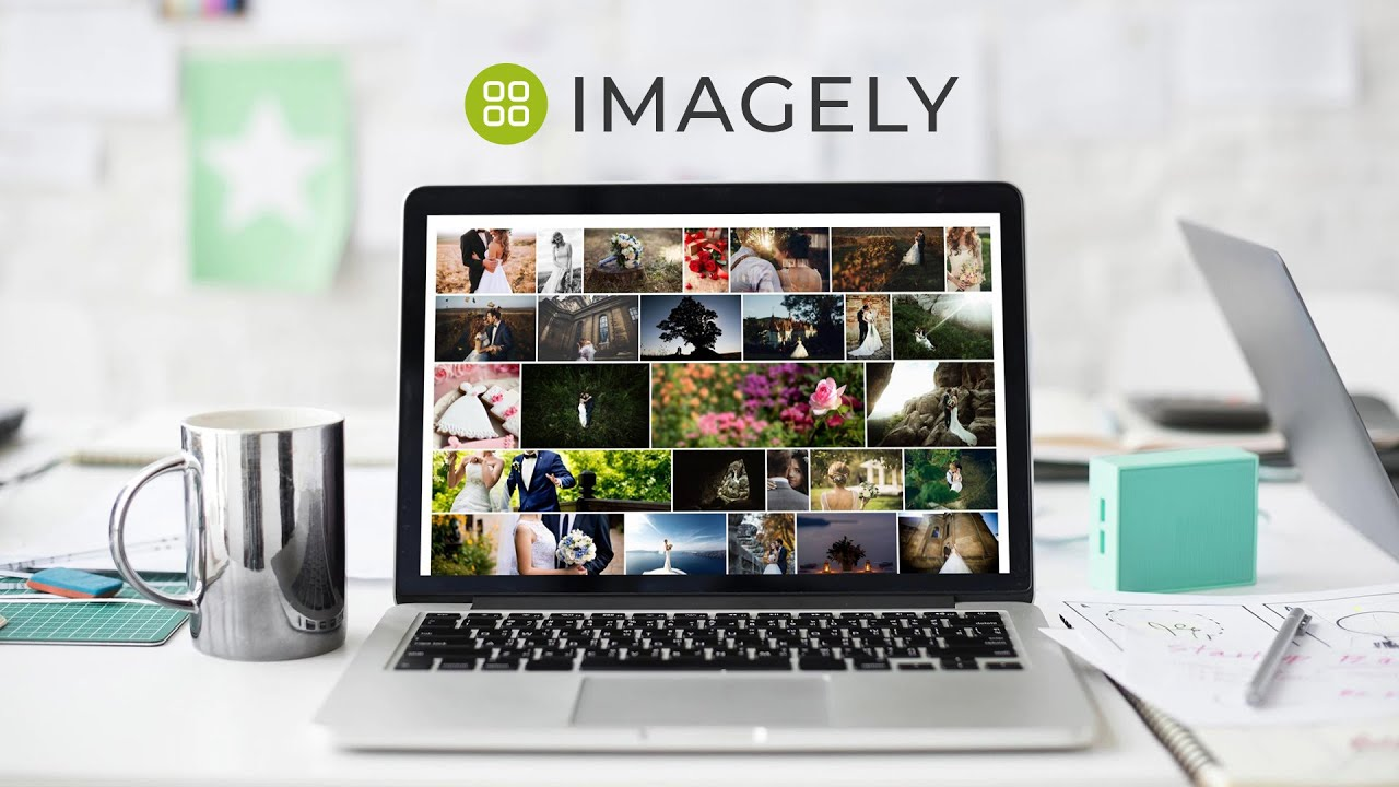 WordPress Gallery Plugin – NextGEN Gallery – WordPress plugin