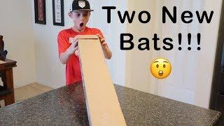 2 New Baseball Bats