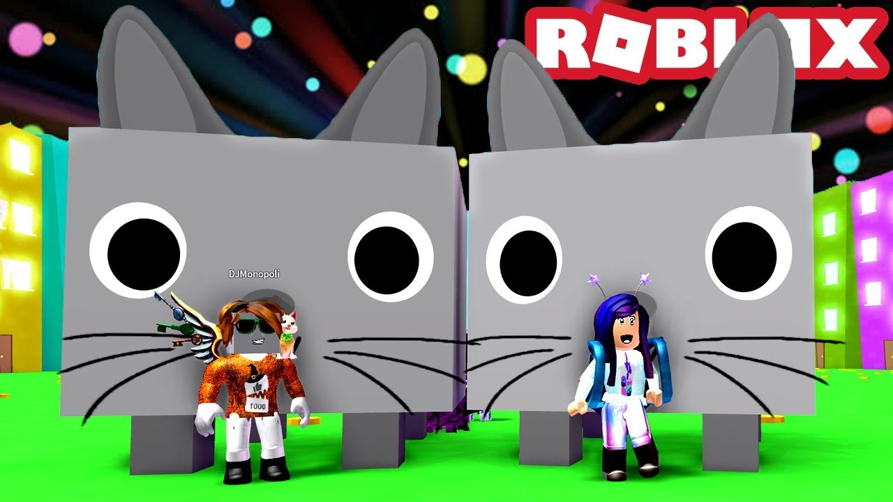 2 Giant Cats On The Dominus Chest Roblox Pet Simulator Youtube