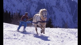 Skijoring - The Incredible Horse Skiing Sport