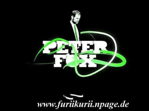 Peter Fox Ich Steine, Du Steine