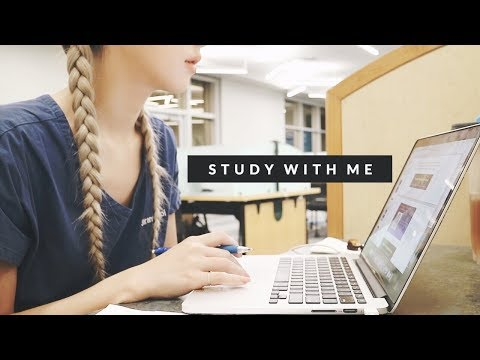 STUDY WITH ME AT THE HPD LIBRARY | 치대/의대 도서관에서 같이 공부해요
