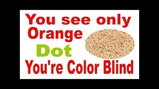 আপনি কি কালার ব্লাইন্ড -- ছোট্ট একটি পরীক্ষাতে বুঝে নিন -- Color Blind Test