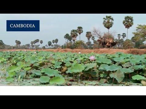 Renewable Energy in Cambodia
